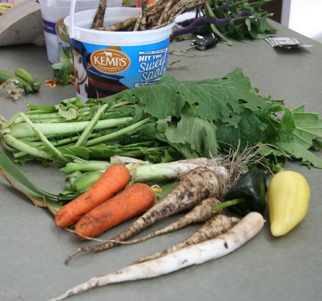 stir fry produce 10-14