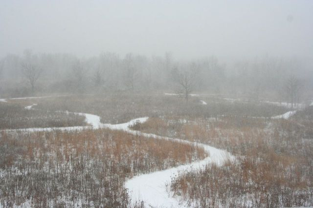 snow november 10 2014