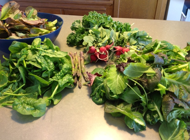 harvest for May 21, 2015