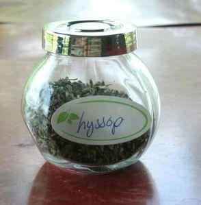 dry hyssop