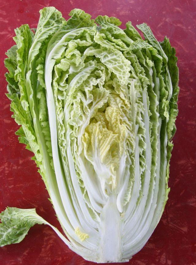napa cabbage half