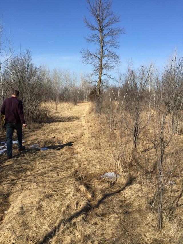 wetland border 3-6-16